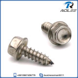 Stainless Steel Hex Washer Head Self Tapping Sheet Metal Screw