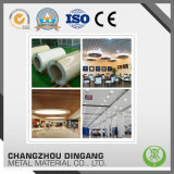 Color Coated Aluminum Alloy Product Used for Hung Ceiling in Building
