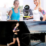 Mobile Phone Accessories New Design Sport Armband Case