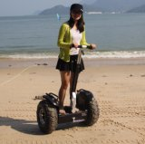 Two Wheel Electric Bike off Road Electric Car Self Balancing Electric Scooter