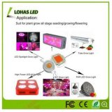 COB LED Chip 10W 20W 30W 50W 100W Warm White Cool White RGB High Power LED Chip