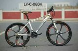 Ly-C-0604 Cool Mountain Bicycles for Cool Adult