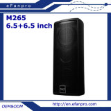 Factory Double 6.5 Inch Professional Meeting Room Speaker (M265 - TACT)
