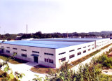 Steel Structure Plant for Customized (SSW-124)