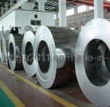 Hot or Cold Rolled Stainless Steel Coil