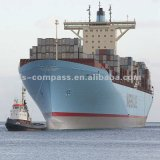 Competitive Shipping Rate From China to Tauranga, New Zealand