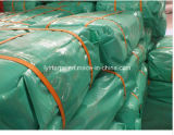 Green Cover Fabric Tarpaulin Sheet/PE Tarp Sheet