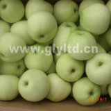 New Crop Fresh Golden Apple Grade a and B