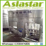 Small Scale 2000lph Mineral Water Treatment System