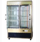 Upright Soft Drink Display Refrigerator Beverage Freezer Display Showcase