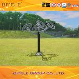 Outdoor&Indoor Gym Fitness Playground Equipment (QTL-2504)