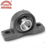 ISO ---Pillow Block Bearing Uct Series (UCP201-UCP217)