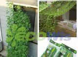 Climbing Plant Support Trellis China Manufacturer
