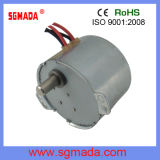 AC Synchronous Motor (49TYD-375-2)