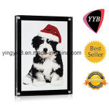 Newest Design Acrylic Photo Frame with Magnet (YYB-017)