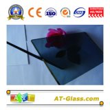 4mm, 5mm, 6mm, 8mm, 10mm Tinted Float Glass/Float Glass/Tinted Glass/Building Glass