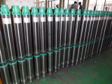 100Y Submersible Borehole Pump