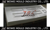 Customized SMC Door Skin Compression Mould with Wood Grain Surface
