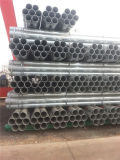 ASTM A53 A106 BS1387 Hot Dipped Galvanized Tube Steel for Building