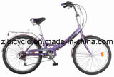Hot Sale High Quality Single Speed City Bicycle Bike (Zl059465)