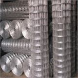 Stainless Steel/Galvanized Welded Wire Mesh (ISO SGS)