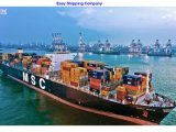 Consolidate Shipping Agent for Cargo From Wenzhou to Us, Canada, Mexico