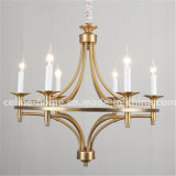 New Design Classic Iron Chandelier (SL2197-6)