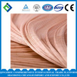 Dipped Polyester Tire Cord Fabric for Industrial