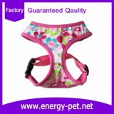Quality Guaranteed Pet Clothes Dog Product of Dog Harness