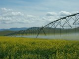 Well-Distribution Automatic Center Pivot Irrigation System for Agriculture