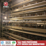 Poultry Feed Equipment /Poultry Farm Equipment/ Layer Chicken Battery Cage