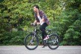 Tdjdc High Precion Shaft Drive Bike 6061 Aluminium Alloy Travel Bike Removable Bicycle