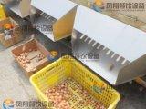 Auotmatic Orange Pomegranate Fruit and Vegetable Sorting Grading Machine
