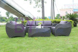 Hot Sale All Weather Poly Rattan Sofa Set for Lobby