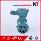 AC Motor, Three Phase Explosion-Proof Motor with CE