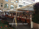 Commercial Outdoor Heater Electricial Infrared Heater (IP65)