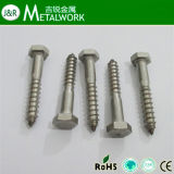 Stainless Steel Hex Lag Screw DIN571