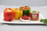 Tomato Paste (70g 28%-30%)
