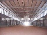Steel Structure House/Steel Structure/Workshop (SSW-27)