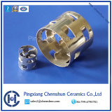 Ss304 Pall Ring as Chemical Tower Packing-Random Packing-Metal Ring