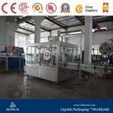 Small Carbonated Drink Filling Production Line