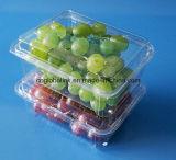 OEM Plastic Fruit Container Clear Pet Fruit Punnet