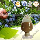 Juniper Berry Extract