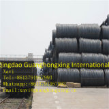 Steel Wire Rod for Concrete/Reinforce/Construction