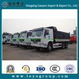 Sinotruk Heavy Duty 10 Wheel Dump Truck for Sale