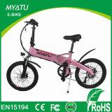 Magnesium Integrated Electric Folding Bike