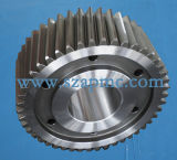 Helical Gear, Custom Gear