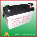 2015 Your Best Supplier with The Highest Quality for Gel Battery/Solar/Deep Cycle Battery