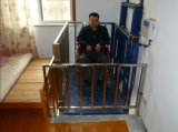 Vertical Home Disabled Elevator (SJG II)