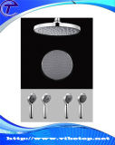 Wholesale Price of Metal Shower Head Sh-004